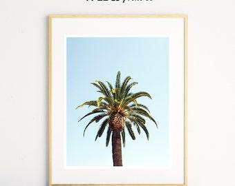 Tropical Palm Tree Print, Palm Tree Wall Art, Blue and Green Prints, Beach House Decor, Palm Tree Photo, Modern Minimal, Digital Download