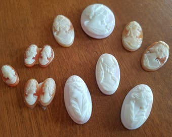 Set of 12 Pink and Brown Genuine Shell Cameo Pieces