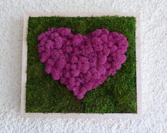Gift declaration of love, Valentine, heart stabilized Lichen moss green Fuchsia