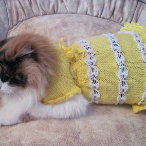 KNITTED CAT Clothing Pet Gift Pet Dresses cat sweater wedding cat dress Dress-for-Small Dogs sphynx clothing sphynx sweater cat lover gift