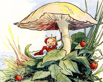 Mushroom Fairy Fabric - Faerie Sleeps in a Milkweed Pod - Repro Johnny Gruelle