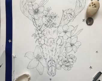 Floral stag | botanical skull