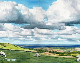 South Downs Sheep, original watercolour painting