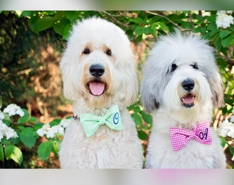 Dog Bow Tie || Gingham Monogram Pet Bowtie || Best Personalize Puppy Gift by Three Spoiled Dogs