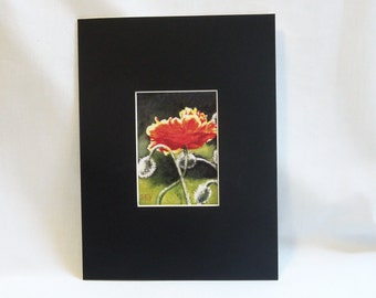 """ACEO mat - Black with White Core - to fit 6 """" x 8"""" frame"""