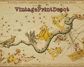 Noctua, Noctua Art, Noctua Wall Art, Zodiac Sign, Noctua Constellation, Horoscope, Astrology Art, Galaxy Art, Mythological Art