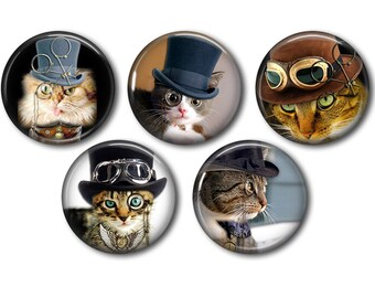 Lot 5 resin craft, round cabochons, after 20 or 25mm cat Steampunk 01