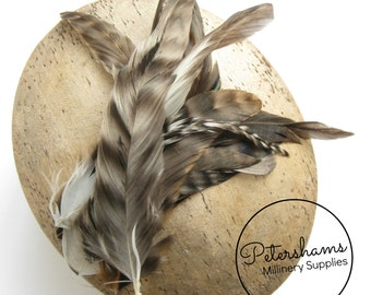Full Coque Chinchilla Feathers for Millinery and Hat Trimming - Natural
