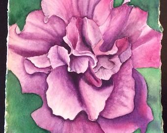 FREE SHIPPING!!!  Original watercolor of purple double petunia.