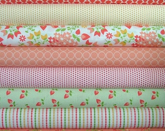 Sundrops Fat Quarter Bundle of 8 by Corey Yoder for Moda LAST ONE