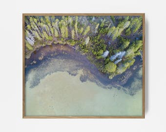 arial beach print, arial shore print, beach art, arial beach art, arial beach photo, forest beach, natural wall art, nature print, tree art