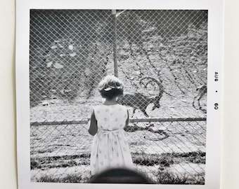 Original Vintage Photograph | The Girl at the Zoo | 1960