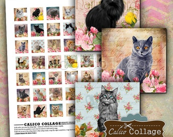 Kitten Digital Collage Sheet 1x1 Inch Inchies Kitty Images for Pendants, Scrapbooking, Jewelry images, Resin, Glass, Magnets, Digital Paper