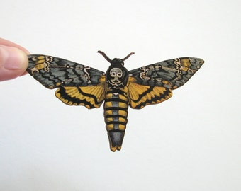 deaths head moth pin brooch