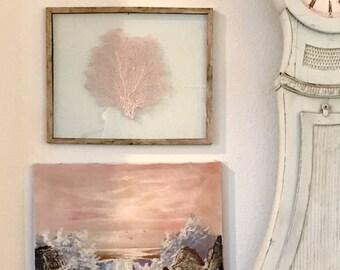 Framed Sea Fan - Ballet Slipper Pink
