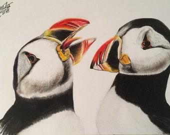 Custom, Puffin. Watercolor pencil sketch