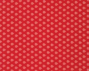 True Colors Tula Pink Ladybug Lava- 1/2yd