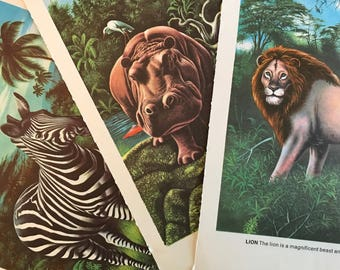 Set of 3 Zebra, Hippo and Lion Colorful Illustrations 1970s Picture Book Wild Animals Jungle African To Frame