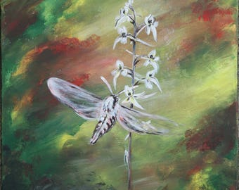 Lesser butterfly-orchid and moth. Original acrylic painting on canvas. ready to hang, wall decor