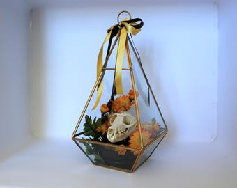 Glass Terrarium with Bat Skull