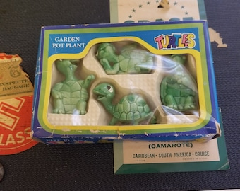 Adorable small turtles for potted plants.