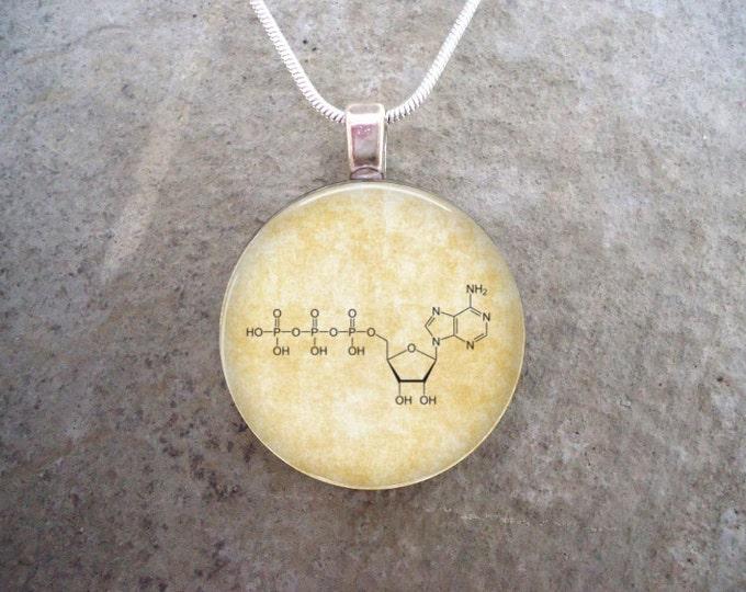 Chemistry Jewelry - Adenosine Triphosphate ATP Molecule - Glass Pendant Necklace
