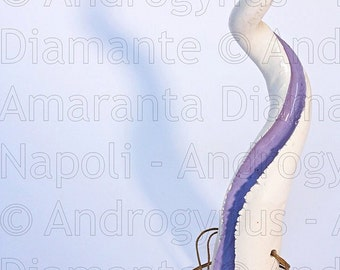 White and lilac Androgynus horn