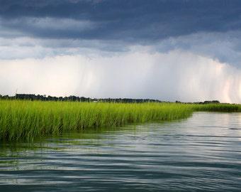 Rain on the Marsh