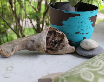 Coastal Driftwood Piece , Natural Garden and Home Decor , Beach Decoration