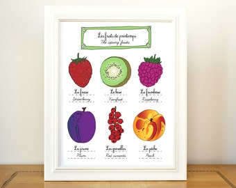 Kitchen Art Food 'Spring Fruits' - 11x14 art print of original illustration - French Retro Kitchen home decor botanical chart