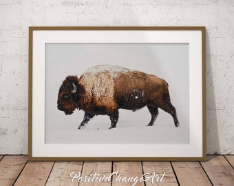Buffalo Print, Bison Print, Buffalo Art Print, Bison Art, Buffalo Wall Art, Buffalo Poster, Printable Buffalo Snow Buffalo Photography Decor