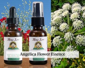 Angelica Flower Essence, 1 oz Dropper or Spray for Feeling Protected and Guided Spiritually