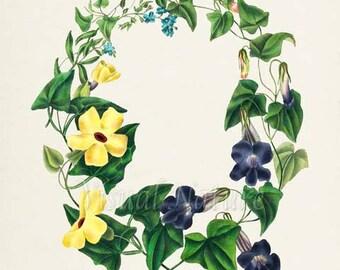 Floral Wreath Art Print, Botanical Art Print, Flower Wall Art, Flower Print, purple, yellow, Flower bouquet