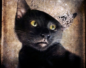Kitten Art Black Cat Photo Cat wearing a Tiara Animal Photography Art Custom Pet Portrait Gift for Cat Lovers Print - Princess Moe