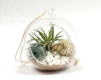 Taurus May Emerald Air Plant Garden Kit • terrarium tillandsia birthstone crystal birthday personalize gift diy present airplant