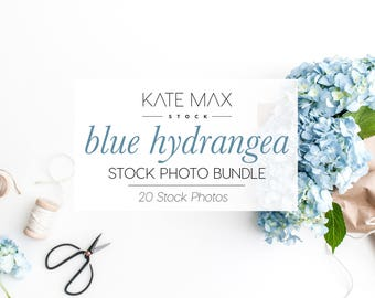 Blue Hydrangea Stock Photo Bundle / Styled Stock Photos / 20 KateMaxStock Flower Branding Images for Your Business