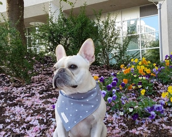French Bulldog, French Bulldog bandana, Bandana, Reversible Bandana, Pet accessories, Dog accessories, Dog bandana