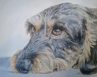 "9x12"" Custom Pet Portrait In Acrylic"