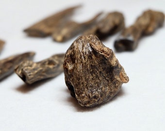 Super Old Cambodian Agarwood Solid piece 10gr