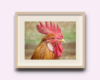 Rooster kitchen decor, rooster print, country wall decor, kitchen decor, chicken decor, farmhouse decor, farmhouse wall art, rooster picture