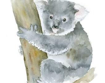 Koala Watercolor Painting - 11 x 14 - Giclee Print - Animal Painting Wall Art - Australia Animal