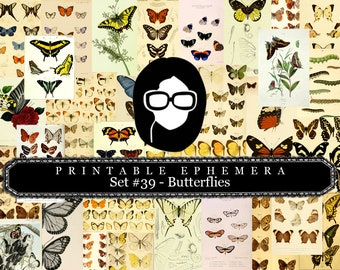 Butterflies Ephemera Pack - Printable Ephemera Set #39 - 30 Page Instant Download - junk journal kit, fruit art, ephemera paper pack