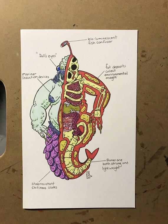 Monstrous Anatomy
