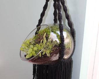 The Womb- Unique Macrame Style Plant Hanger