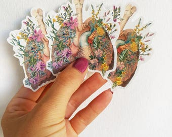 Lungs and Heart with wild flowers Anatomy stickers set laptop stickers, Decal sticker, Medical student gift Anatomical STC014