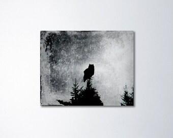 Owl Canvas Art, Owl Art, Bird Art, Nature Wall Art, Canvas Print, Owl Decor, Canvas Gallery Wrap, Black And White, Bird Photography
