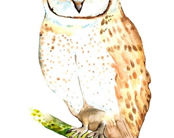 Owl Print Art Bird Print Watercolor Owl Art Painting Owl Print Nursery Bird Cute Print kids room