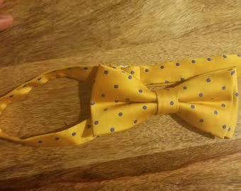 Yellow and blue polka dot ( clip on)