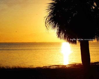 Dark Yellow Sunset Beach Photo, Ocean Palm Tree Photography, Sunset Sea Picture, Tropical Coastal House Decor, Nautical Home Decor Wall Art