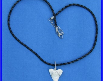 Bull Shark tooth on Leather necklace. B. 29
